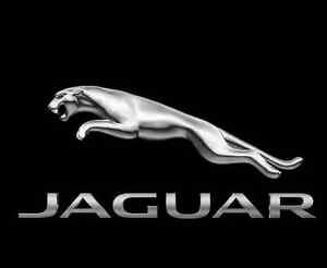Jaguar Badge NIEUW T2R4338
